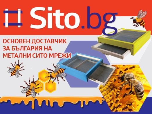 δικτύων μελισσοκομία